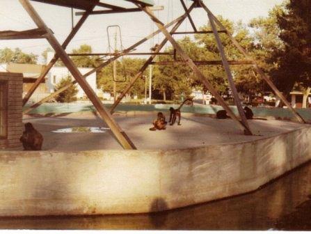 Waybac.1970s.CPMI