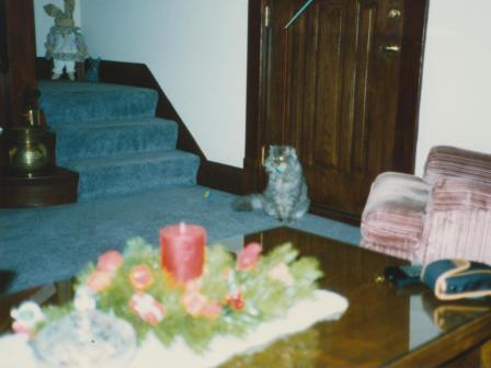 Waybac.1992.12.lcilp1