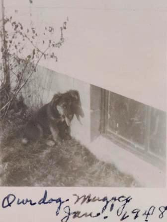 Waybac.1948.01.mh4