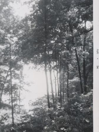 Waybac.1954.08.mfp1
