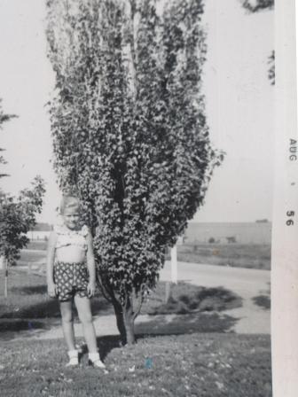 Waybac.1956.08.sil8