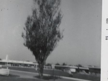 Waybac.1958.11.mfp1