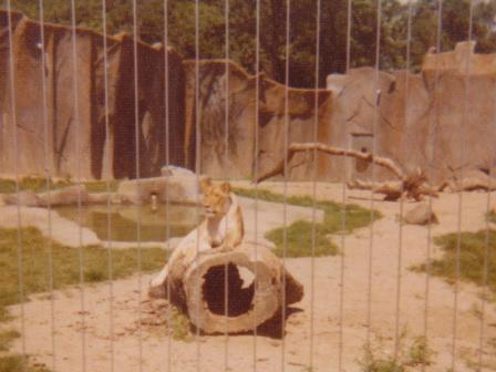 Waybac.1976.czv3
