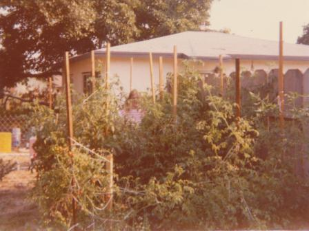 Waybac.1979.07.ltat3