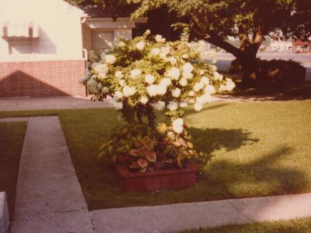 Waybac.1979.08.ggbh3
