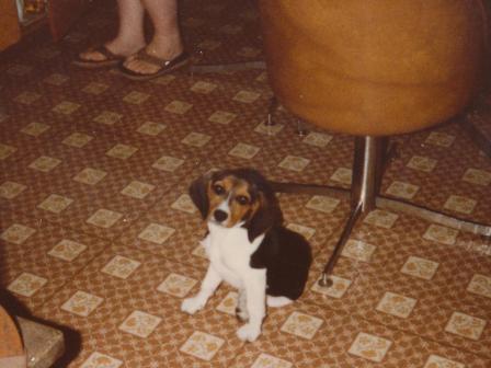 Waybac.1983.07.18.rlbbp3