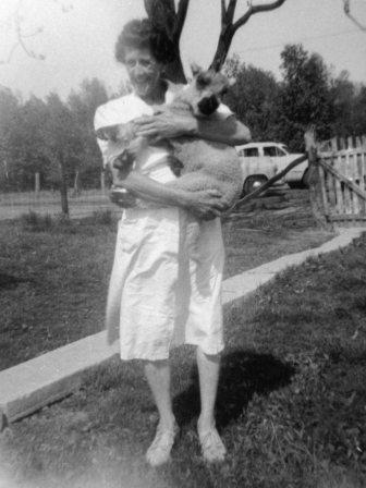 Waybac.1953.afp1