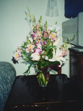 Waybac.1999.09.ammsh49