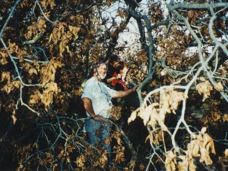 Waybac.1999.11.afttl72