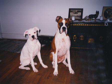 Waybac.1999.12.afc09