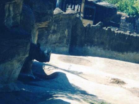 Waybac.2001.05.mciz06