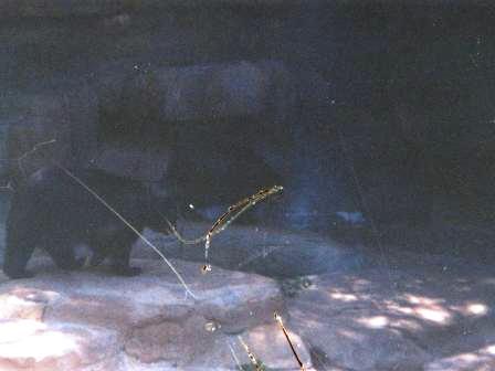 Waybac.2002.05.iz01