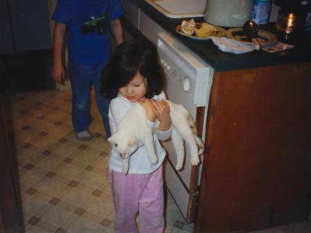 Waybac.2002.11.kwstc1