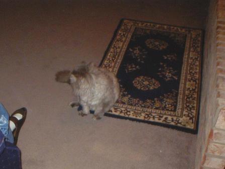 Waybac.2003.01.vtmad14