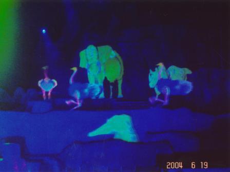 Waybac.2004.06.wdw262