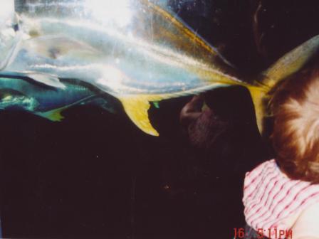 Waybac.2004.06.wdw467
